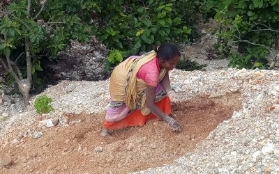 Mica scavenging in Jharkhand destroys lives and environment